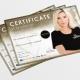 Fakealicious-Certificates